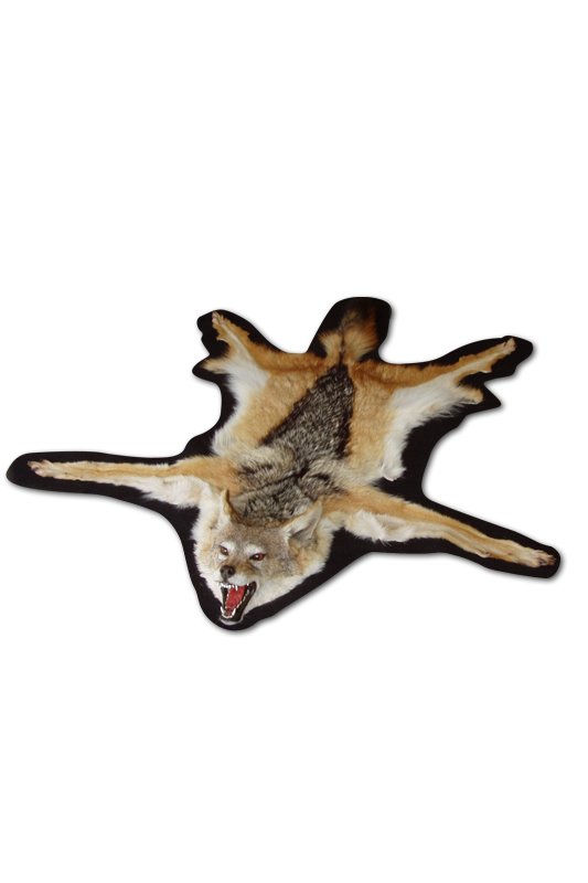 Magnum Taxidermy Rug Mountss